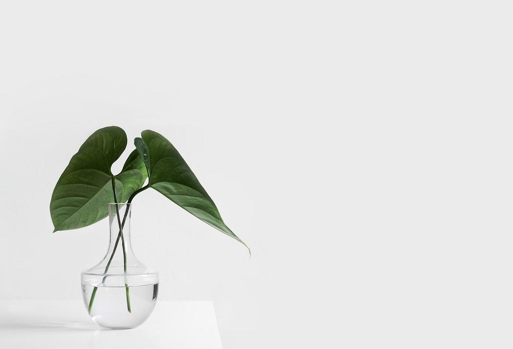 Photographic minimalism