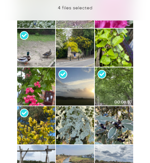 App - Select images to add to Album